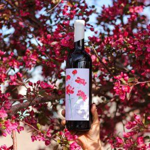 2019 Colorado Tempranillo | (Avant Vineyard)